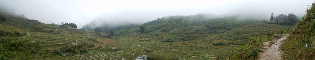 I terrazzamenti di riso