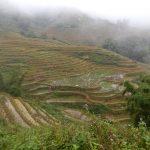Lontano dalla civiltà: trekking tra le risaie di Sapa