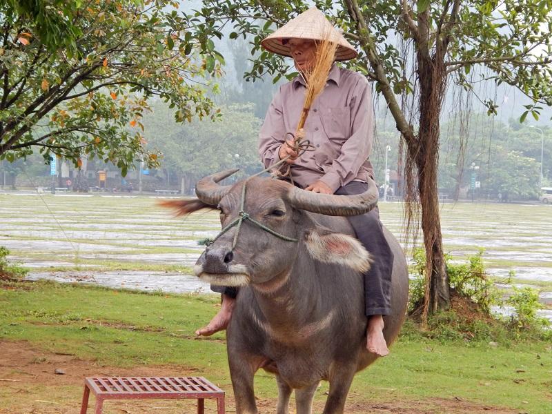 All'interno del tempio Dinh Thien Hoang