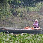 Due settimane in Vietnam: itinerario di viaggio (parte 1)